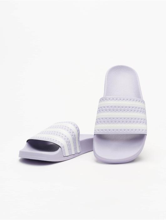 adidas Originals Шлёпанцы Adilette пурпурный