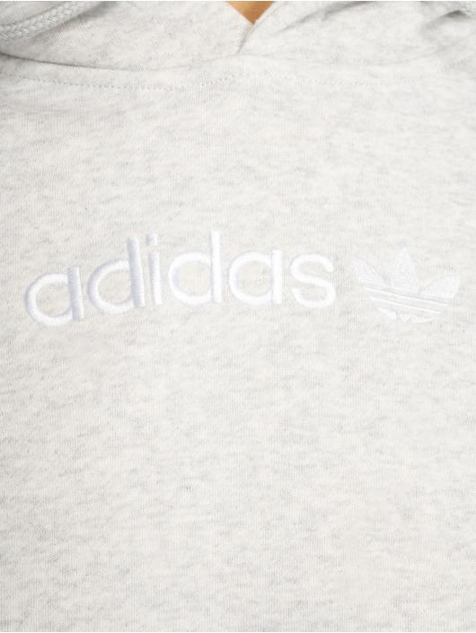 adidas originals Felpa con cappuccio Coeeze grigio