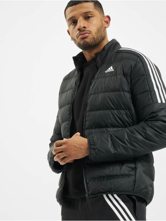 adidas Originals Gewatteerde jassen Ess Down zwart