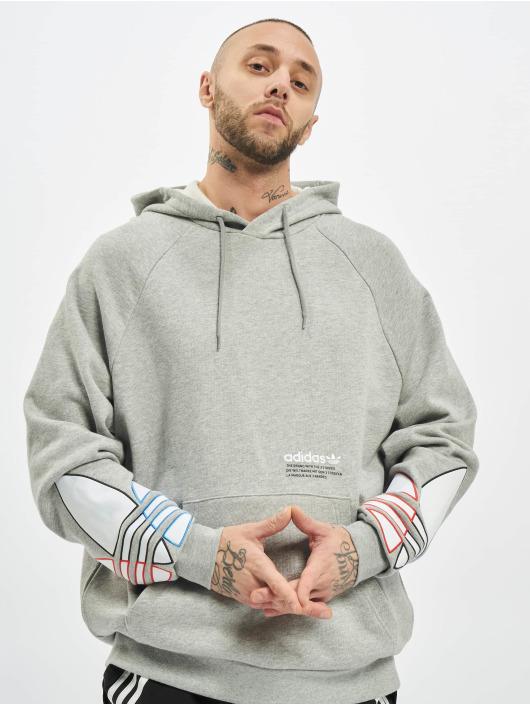adidas Originals Hoodies Tricolor šedá