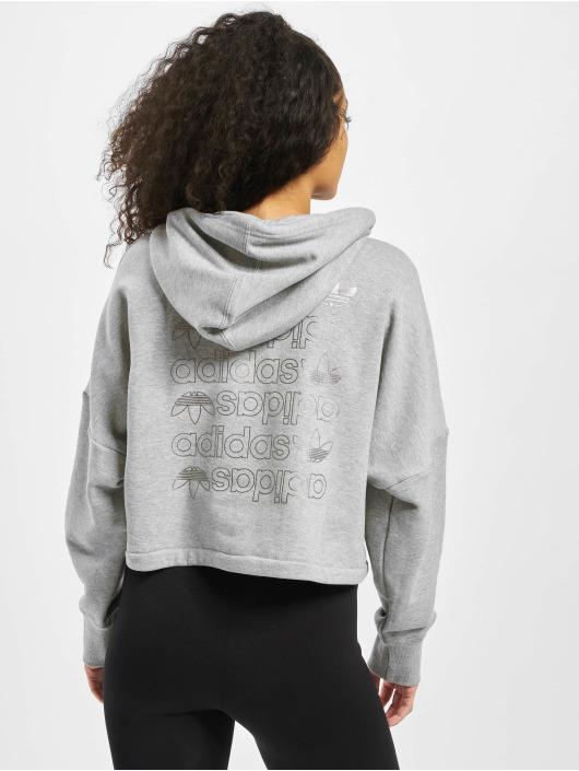 adidas Originals Hoody LRG Logo C- grau