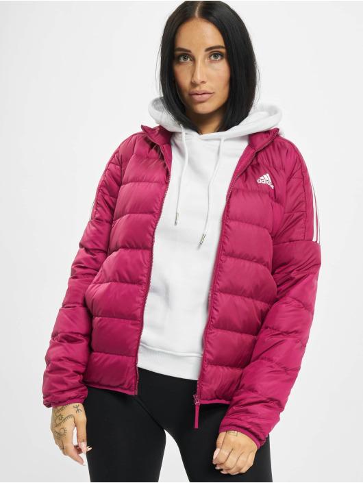 adidas Originals Puffer Jacket Ess Down red