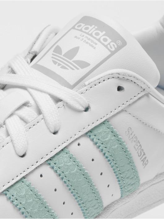 adidas superstar dames defshop