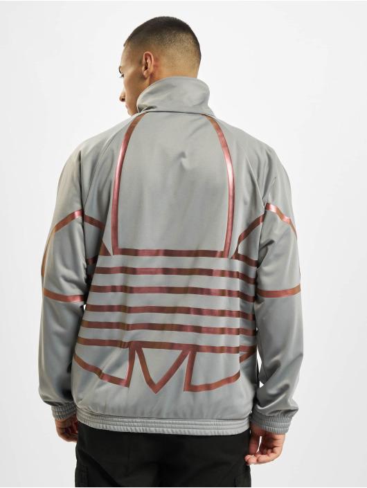 adidas Originals Transitional Jackets Zeno grå