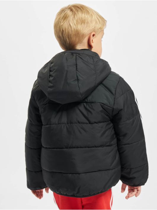 adidas Originals Transitional Jackets Padded svart