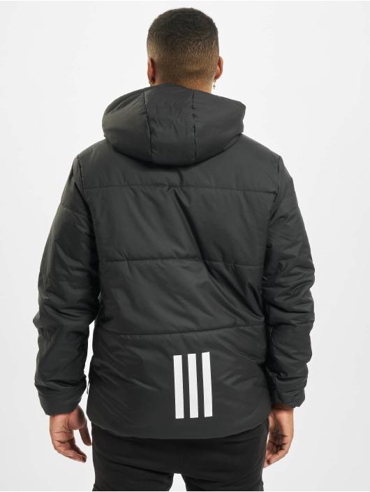 adidas Originals Winter Jacket BSC Insulated black