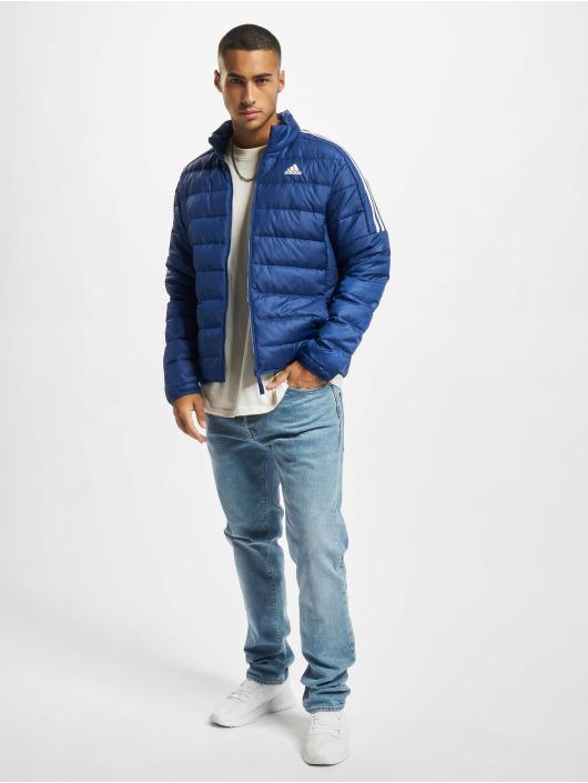 adidas Originals Zimné bundy ESS Down modrá