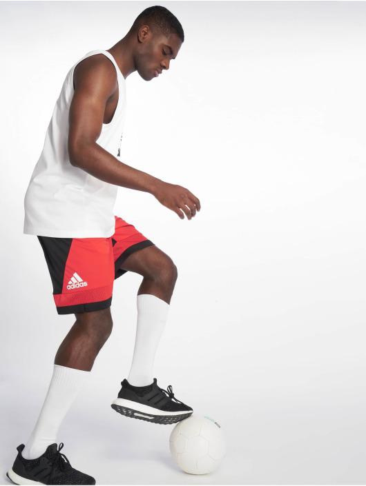 adidas Performance Basketballshorts Pro Bounc red