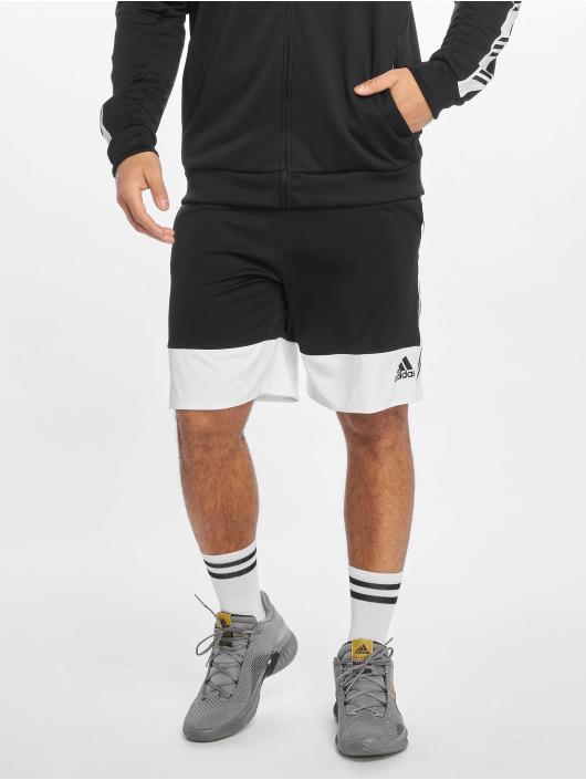 adidas Performance Basketballshorts PM schwarz
