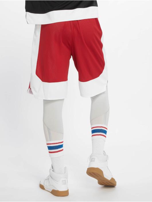 adidas Performance Koripalloshortsit Rev Crzy Exp punainen