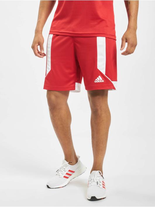 adidas Performance Pantalón cortos Game rojo