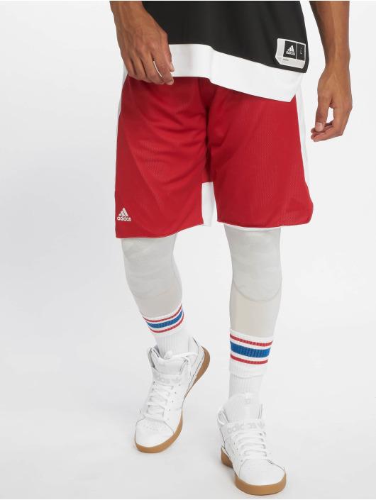 adidas Performance Pantaloncini da basket Rev Crzy Exp rosso