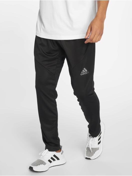 adidas WO Clite Pants Black