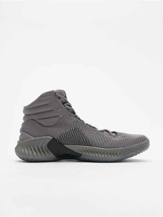 adidas Performance Sneaker Pro Bounce 2018 grau