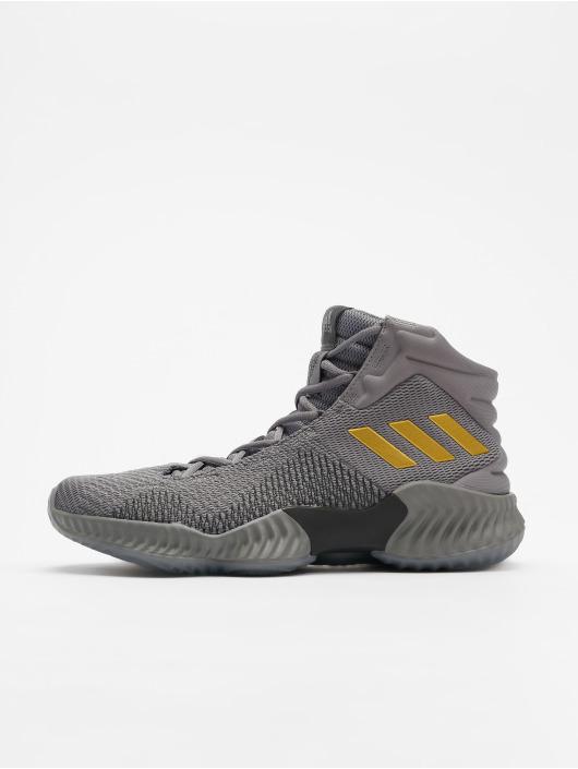 adidas Performance Sneaker Pro Bounce 2018 grigio