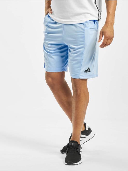 adidas Performance Sport Shorts SPT 3 Stripes blauw