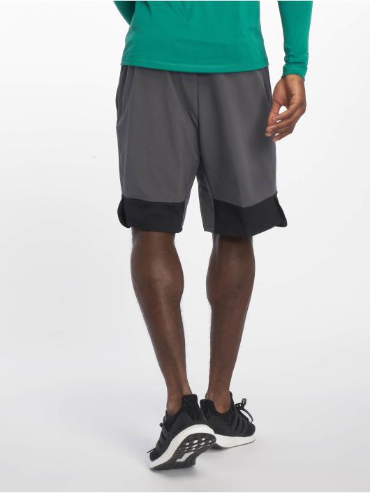 adidas Performance Sport Shorts 4K grau