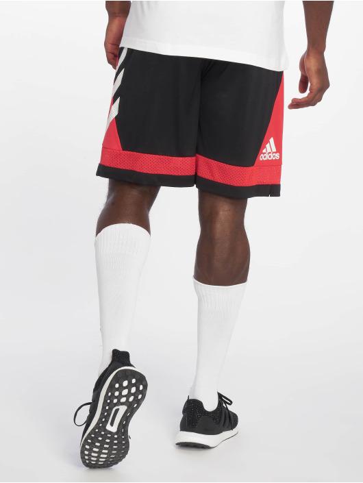 adidas Performance Sport Shorts Pro Bounc rot