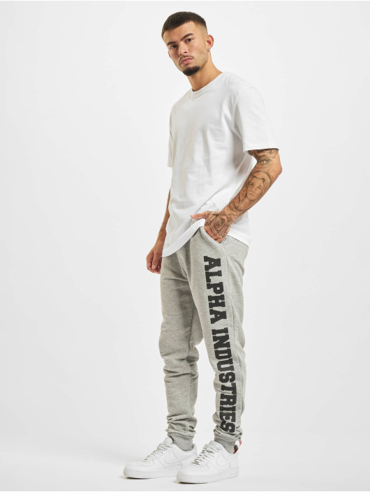 Alpha Industries Спортивные брюки Big Letters серый