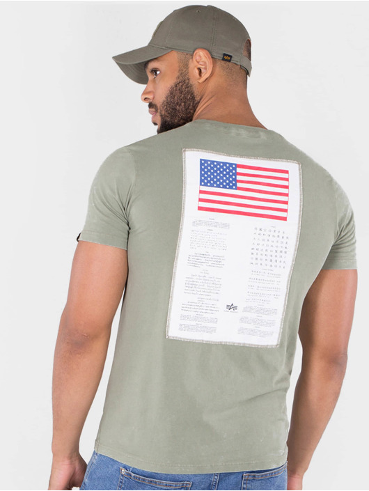 Alpha Industries T-Shirt Blood Chit T olive