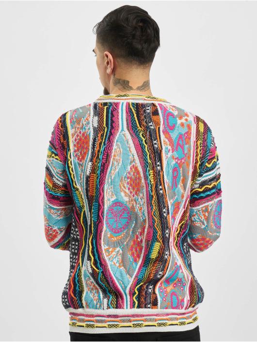 Carlo Colucci Sweat & Pull Jacquard multicolore
