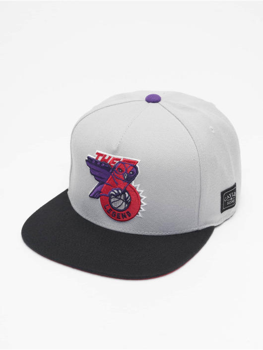 Cayler & Sons Casquette Snapback & Strapback WL Six Owl gris