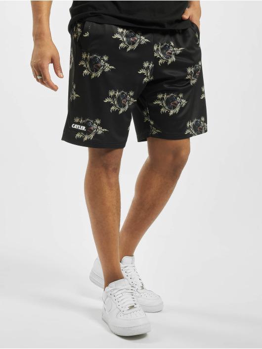 Cayler & Sons Shorts WL Whooo Mesh schwarz