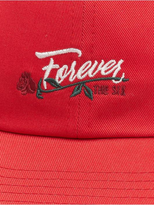 Cayler & Sons Snapback WL Six Forever Curved èervená
