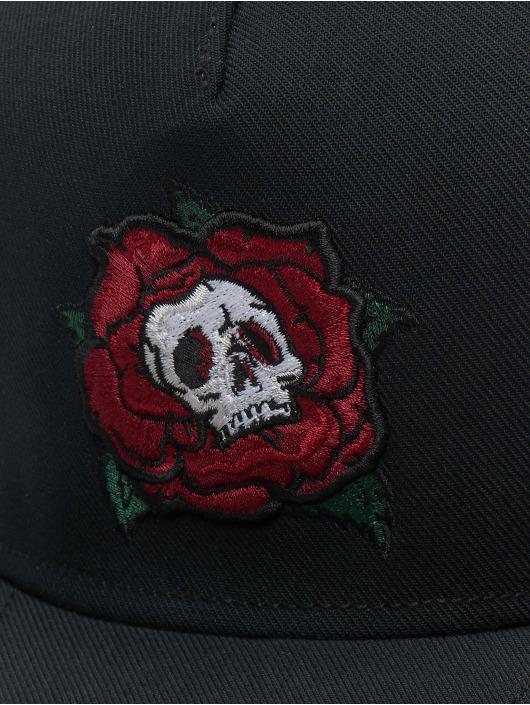 Cayler & Sons Snapback CL Death Rose èierna