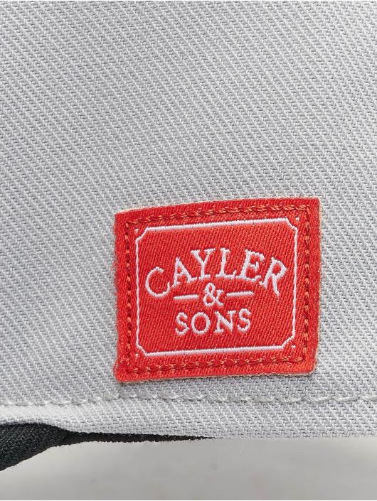 Cayler & Sons Snapback Wl Savings šedá