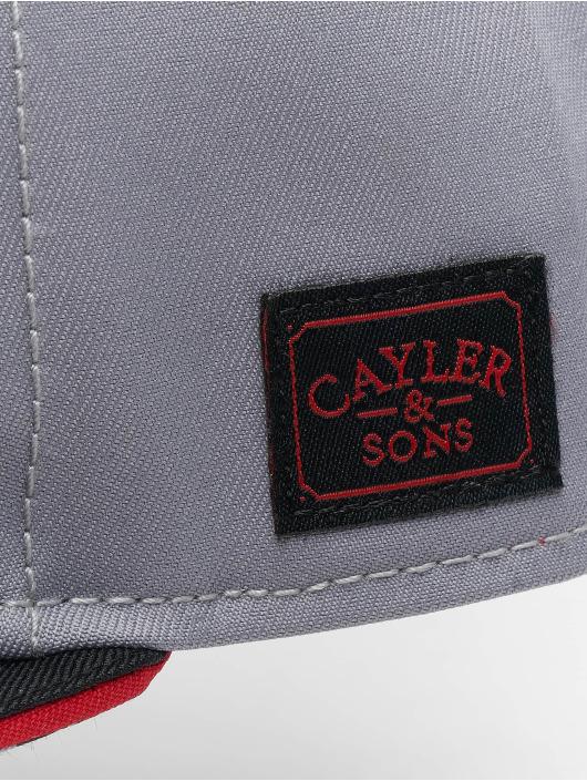 Cayler & Sons Snapback Cap WI Jay Trus grau