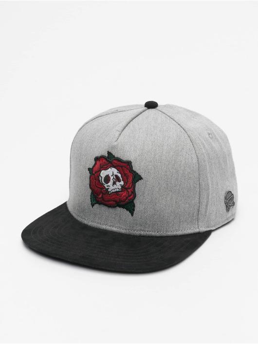 Cayler & Sons Snapback Cap CL Death Rose grau