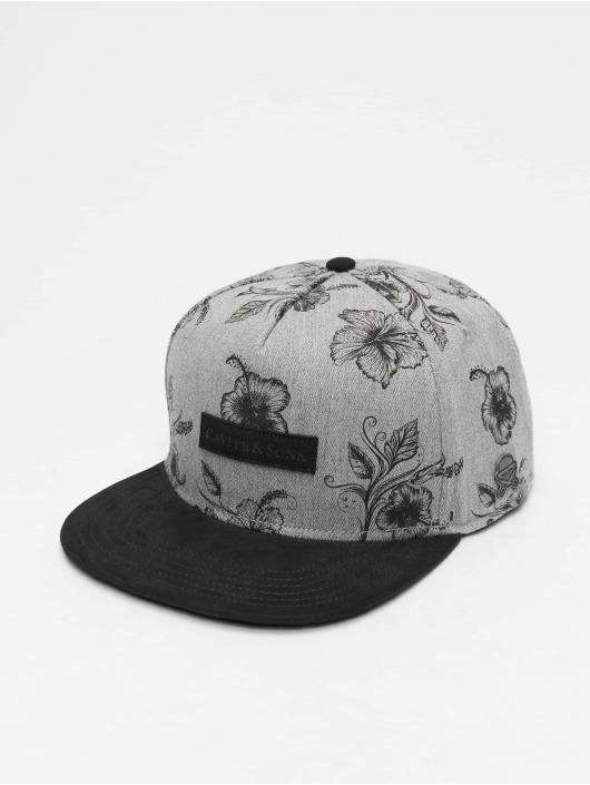 Cayler & Sons Snapback Cap Cl Vibin gray