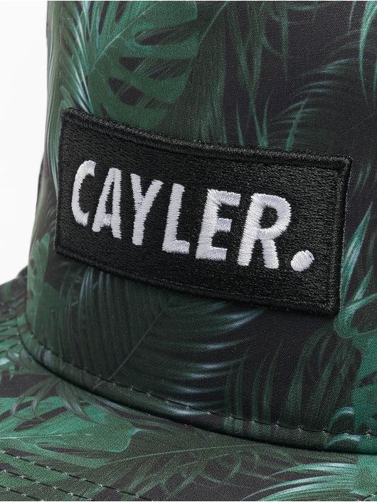 Cayler & Sons Snapback Caps Green Jungle czarny