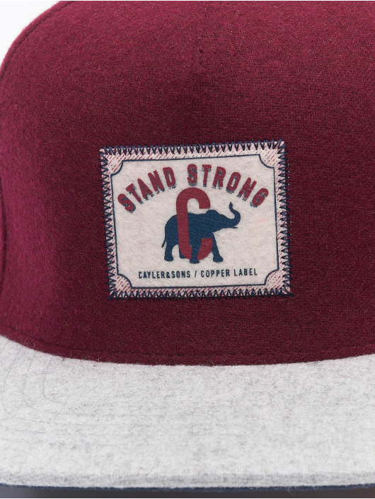 Cayler & Sons Snapback Caps CL Stand Strong red