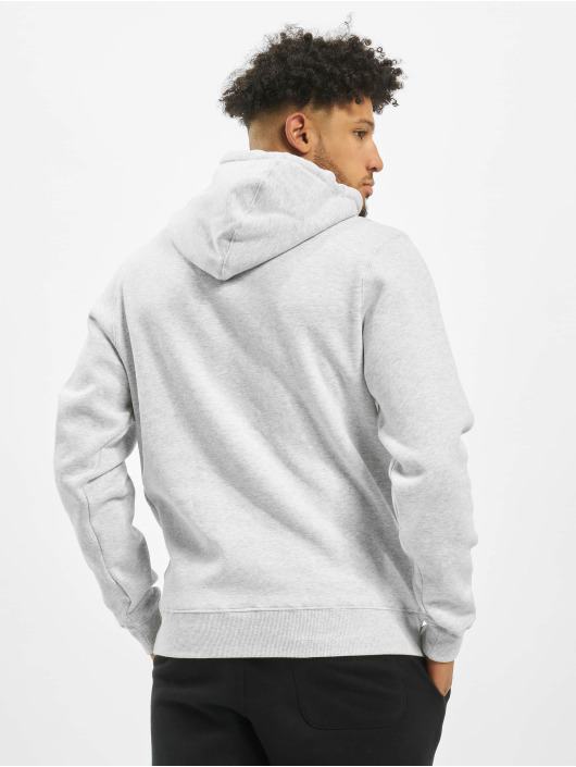 Cayler & Sons Sweat capuche WL Retro gris