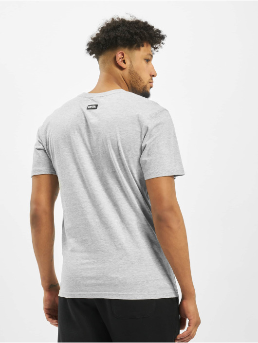 Cayler & Sons T-Shirt WL Northern Lines grey