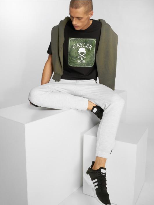Cayler & Sons T-skjorter C&s Wl Palmouflage Box svart