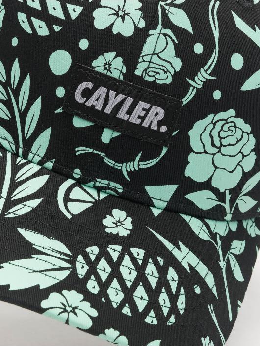 Cayler & Sons Trucker WL Statement Leaves N Wires Curved èierna