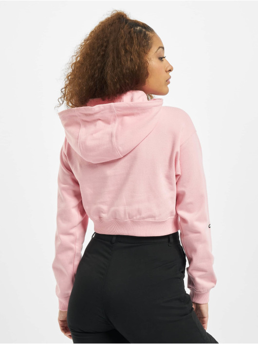 Champion Hoodie Rochester colored