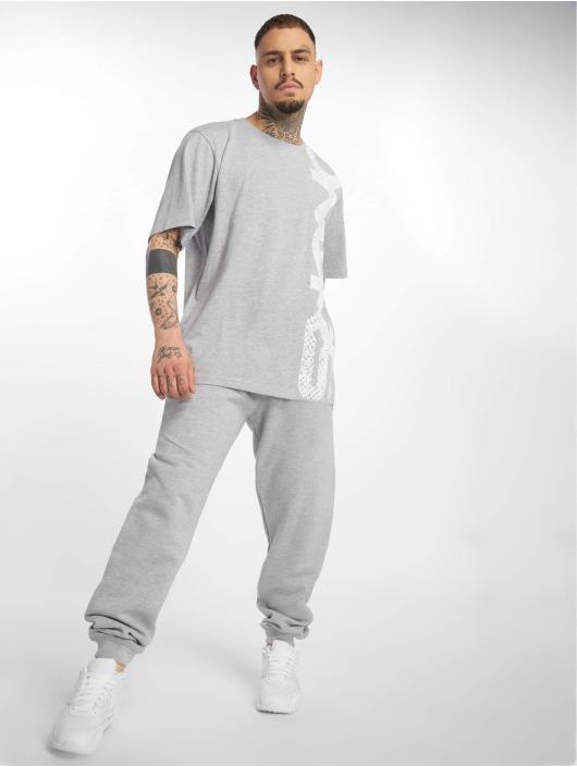 Dangerous DNGRS T-Shirt Classic gray