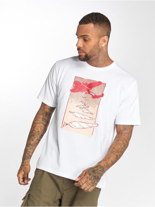 Dangerous DNGRS T-Shirt Weedsky weiß