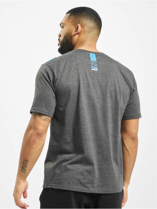 Dangerous DNGRS T-shirts Hyena grå