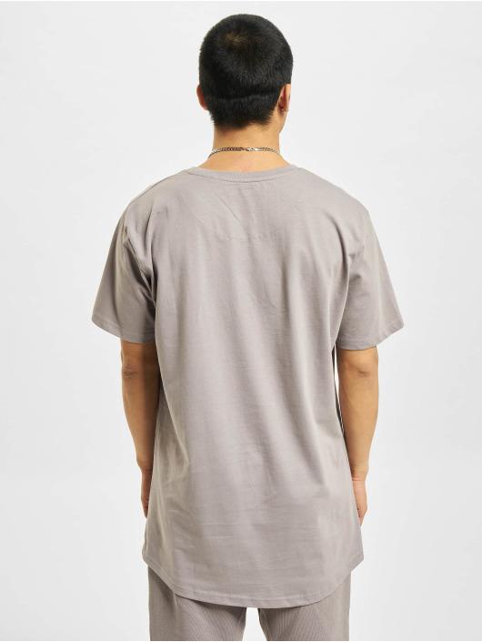 DEF T-Shirt Dedication grau