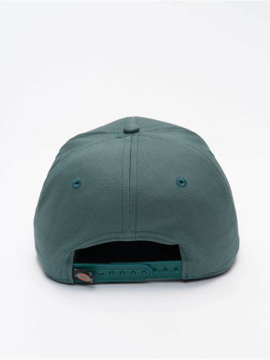 Dickies 5 Panel Caps Muldoon 5 Panel зеленый