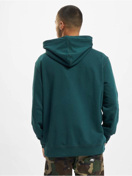 Dickies Bluzy z kapturem DK0A4XAF zielony