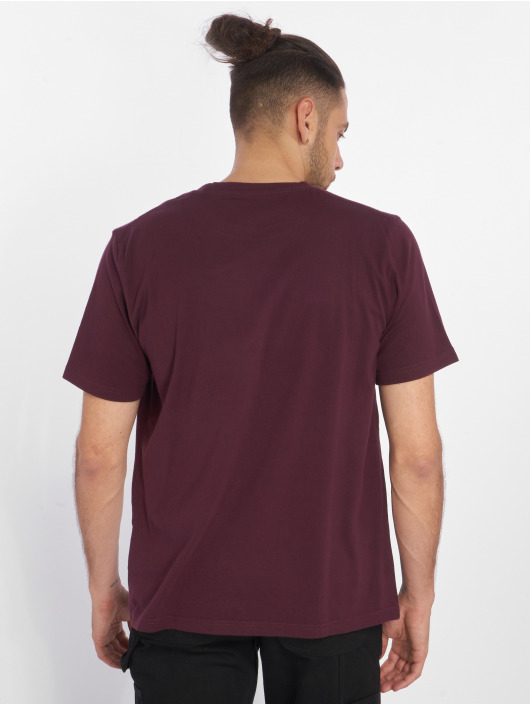 Dickies Camiseta Arcola rojo
