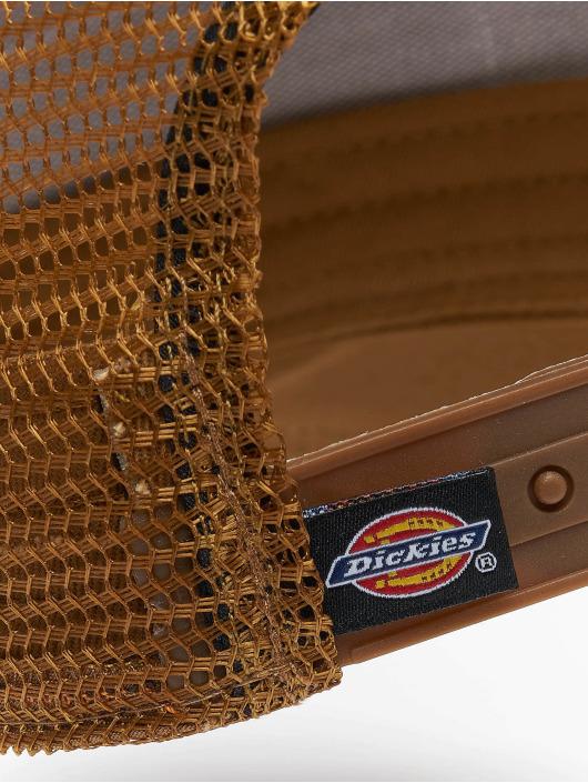 Dickies Gorra Snapback Bricelyn marrón