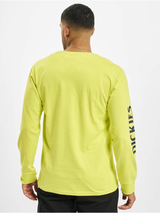 Dickies Longsleeve Baldwin Ls yellow