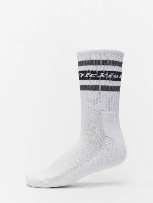 Dickies Ponožky Genola 2-Pack èierna